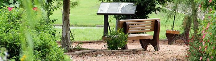 Nature trails and bird watching is popular in                 Pearland